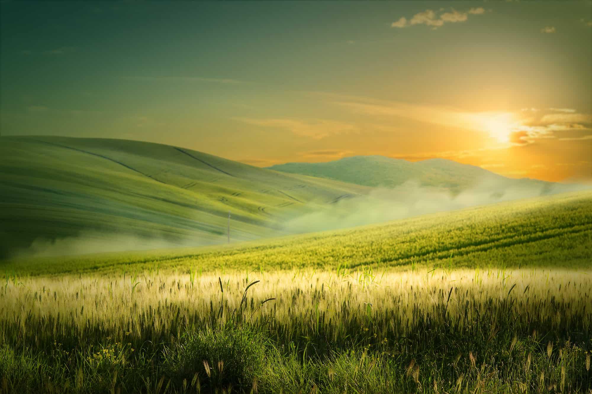 Basics of Landscape Photography