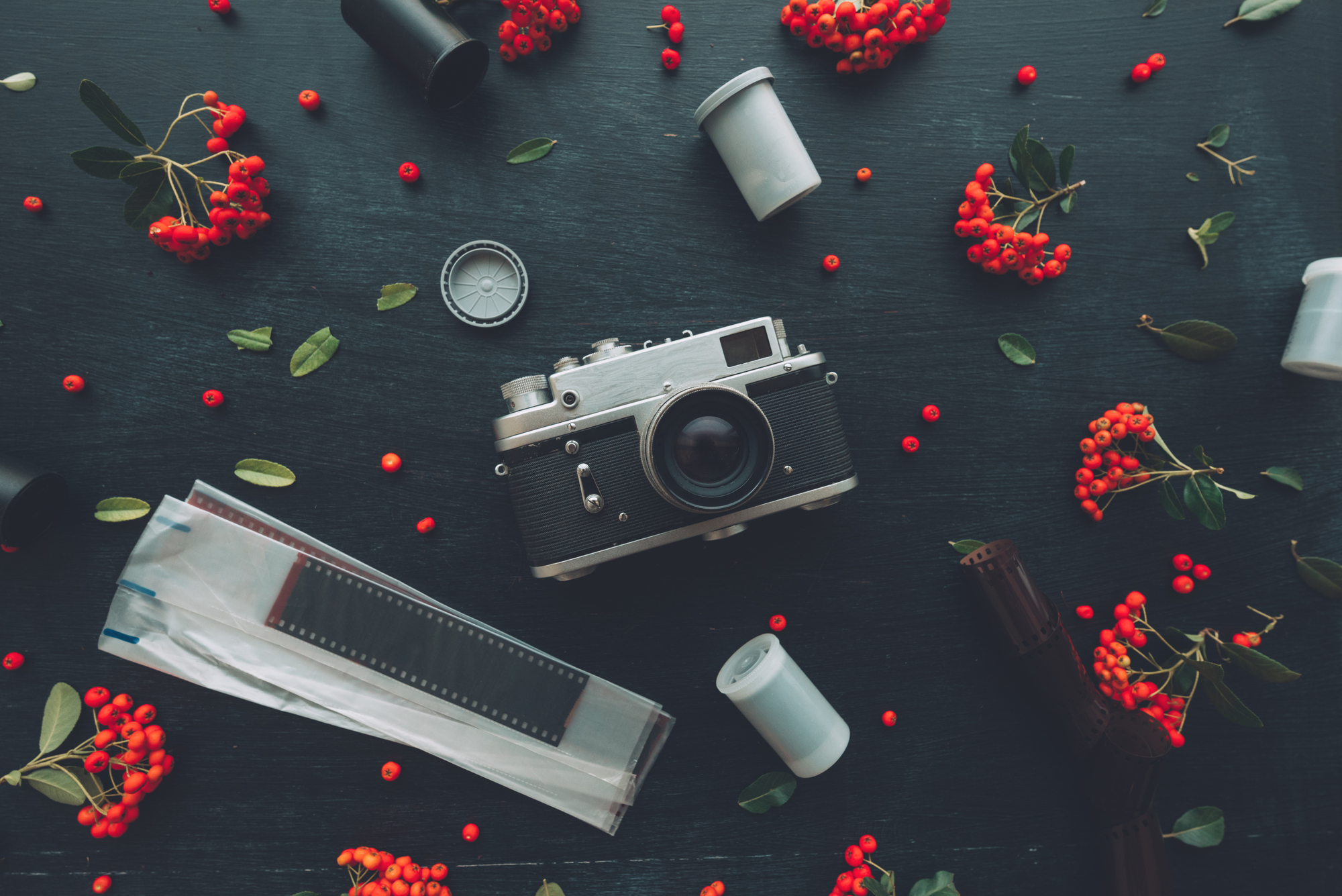 Photography Quotes to Inspire Your Work